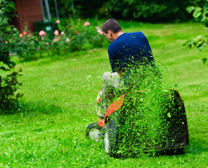 Erin mills gardening landscaping in mississauga ontario for Lawn mowing and gardening services